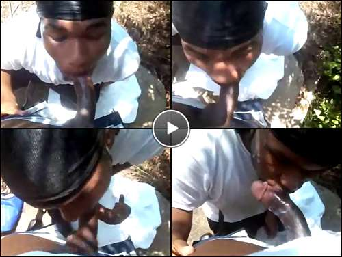 gay blowjons video
